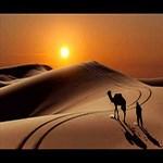 تور ارزان کویر مصر