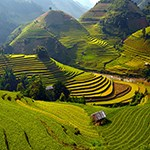 تور ارزان ویتنام