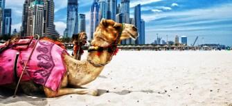 کلیپ دیدنی هتل محبوب5 ستاره  دبی